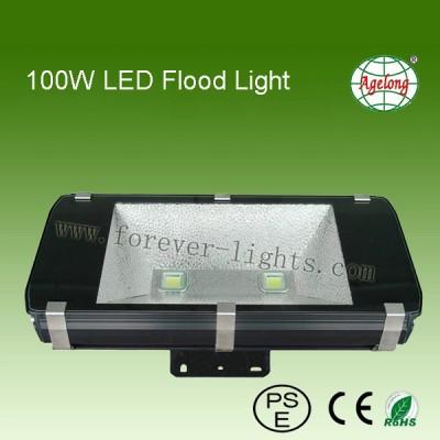 100W LED 泛光灯(600系列)