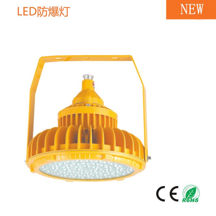 LED防爆工矿灯 (隔爆型) 40W