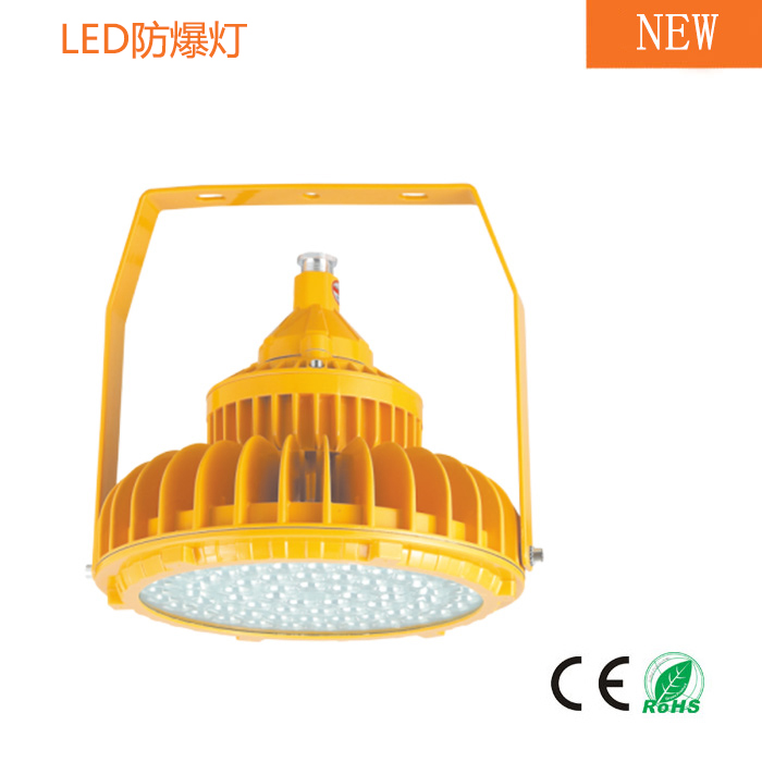 LED防爆工矿灯 (隔爆型) 60W
